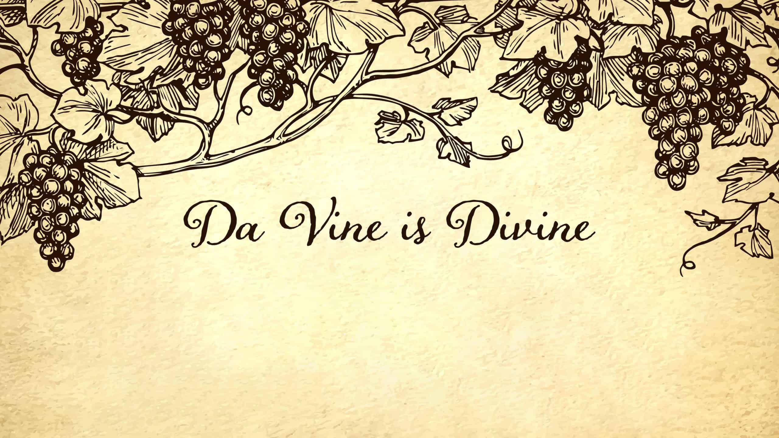 Da Vine is Divine