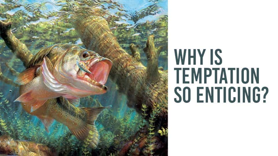 Why Is Temptation So Enticing?